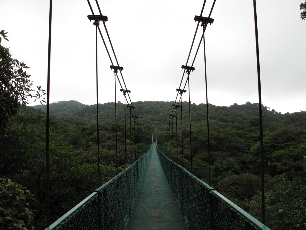 Hanging bridge in Costa Rica
