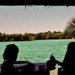 coconuts, Chacahua, Mexico