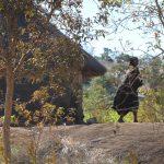 """Watching over a village at Great Zimbabwe"""