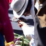 Chicken in La Paz