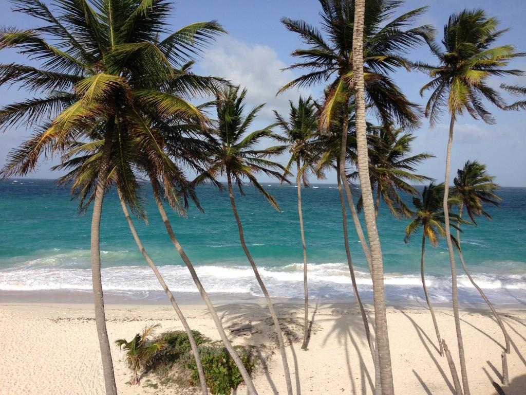 Barbados beaches