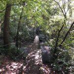 Turkeypen Trail