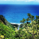 Hawaii Forest & Trails Zip & Dip