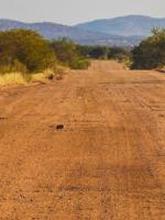Traffic-in-Namibia