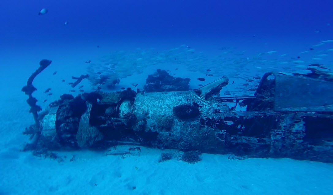 discovering oahus underwater treasures with reef pirates