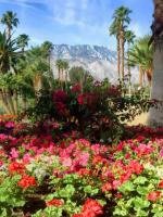 Palm Springs Bucket List